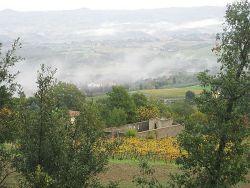 Il cimitero della Pieve di Cellole tra i vigneti, sullo sfondo nebbia mattutina sulla val d'Elsa