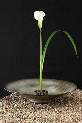 Lire la suite: Ikebana