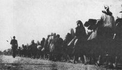 Deportazione al Lager di Jasenovac