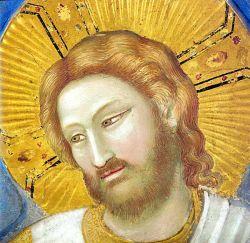 GIOTTO, Volto di Cristo Risorto