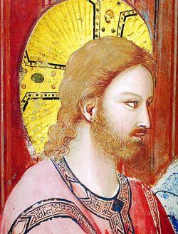 Particolare delle nozze di Cana, Cappella degli Scrovegni - Padova