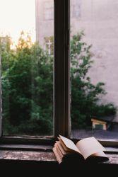 Leggi tutto: Come lasciarsi trasformare dalla lettura?